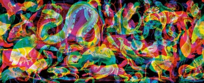 Carnovski's RGB Animalia 1 black wallpaper   Pitter Pattern