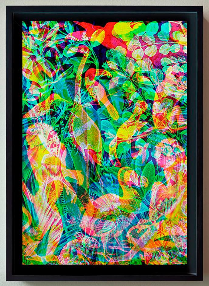 Carnovsky's RGB La Selva Notturno print   Pitter Pattern
