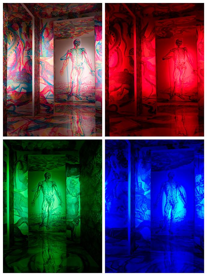Carnovsky's RGB Le Metamorfosi wallpaper   Pitter Pattern
