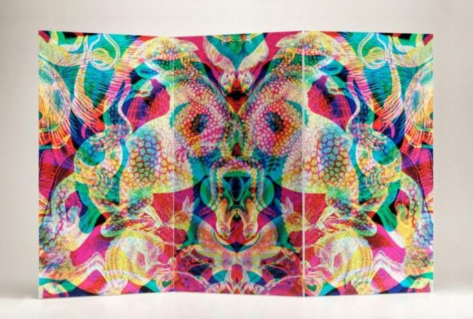 Carnovsky RGB Vesalio screen   Pitter Pattern