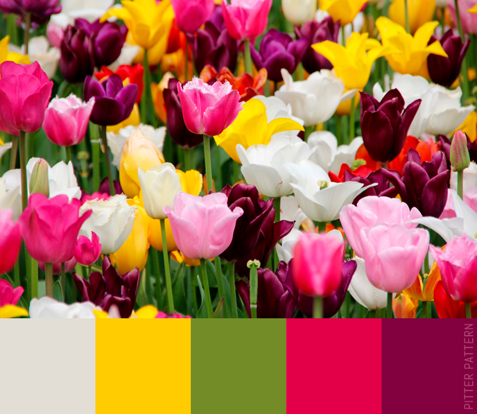 24 striking colour palettes for the daring [2] | Pitter Pattern