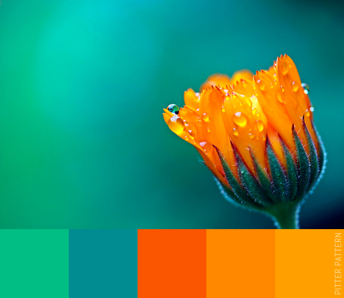 24 striking colour palettes for the daring [17] | Pitter Pattern