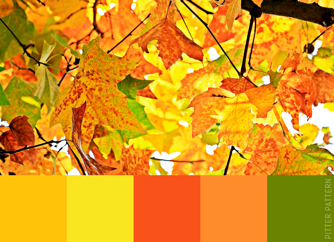 24 striking colour palettes for the daring [19]   Pitter Pattern