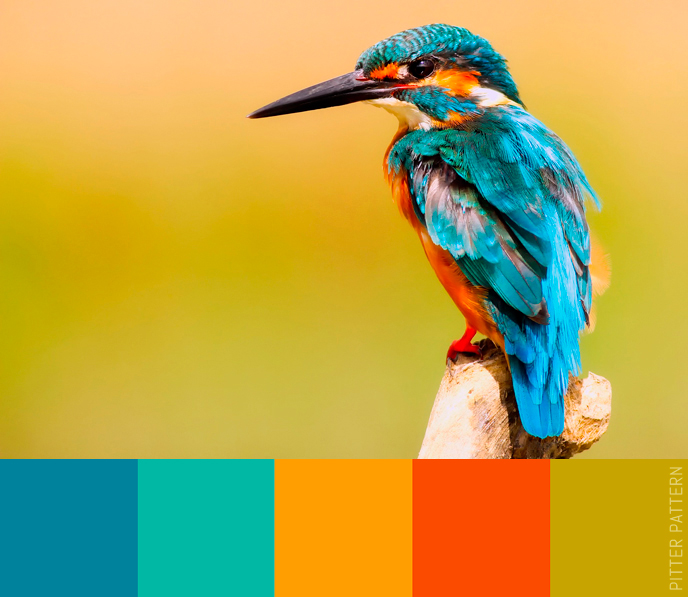 24 striking colour palettes for the daring [23] | Pitter Pattern